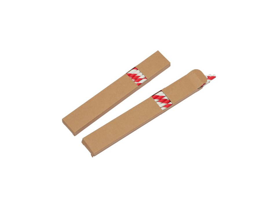 Ecologische set met 10 papieren rietjes rood