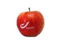 Pommes avec logo 7