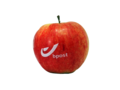 logo apples 7