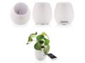 Plant speaker 5