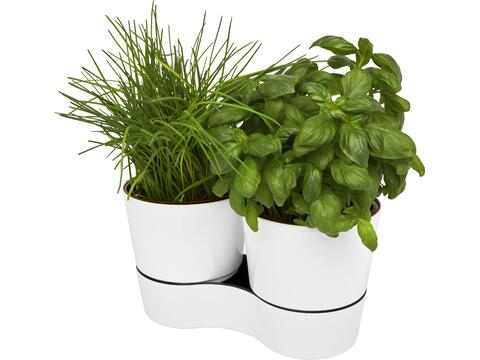 Herbs dubbele keukenpot