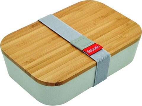 Bento box Akita