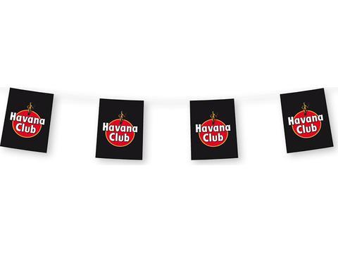 Vlaggenlijnen 5 meter met 12 rechthoekige vlaggen - papier
