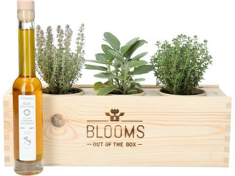 Bloomsbox kruiden met olijfolie en risottorijst