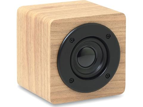 Bluetooth speaker with built-in amplifier