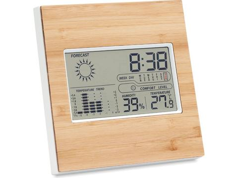 Weerstation thermometer