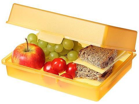 Picknickbox brooddoos 21,5 x 15,8 x 7,1 cm