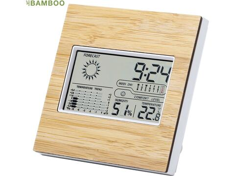 Weather station bamboo