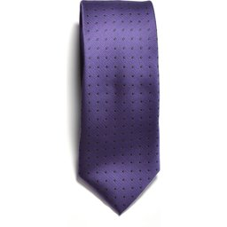2910100_806_TIE_purple_navy