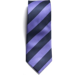 2910200_608_TIE_navy_purple