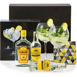 360126 gin tonic kerstpakket