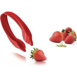 48892606 Fruit Set aardbei