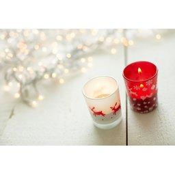 5039_foto-3-glazen-kaarsenhouder-met-kerstdecoratie-low-resolution