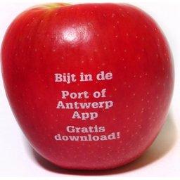 Logo appelen Antwerpen