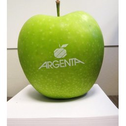 Logo appelen Argenta