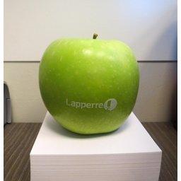 Logo appelen Lapperre