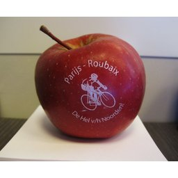 Logo appelen Paris Roubaix