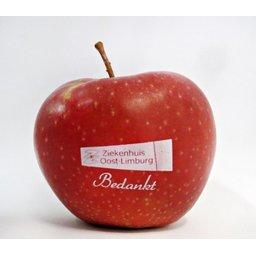 Logo appelen ziekenhuis