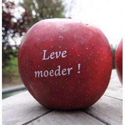 Logo appels moederdag