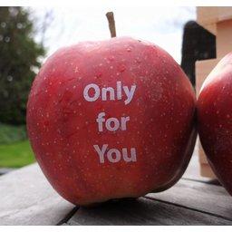 Logo appels rood