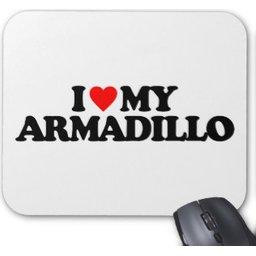armadillo-mat-4358.jpg