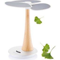 ginkgo-solar-boom-4ee4.jpg