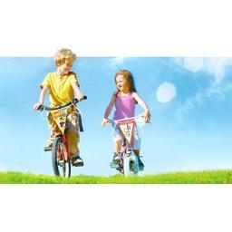 wk-fietsvlaggetjes-d6ac.jpg