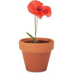 Red Poppy-bloempot