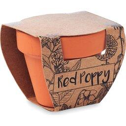 Red Poppy-schuin