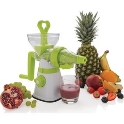 slow juicer 1