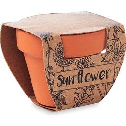 Sunflower-schuin