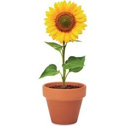 Sunflower- voorbeeld