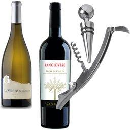 wijnset met flesstop en opener